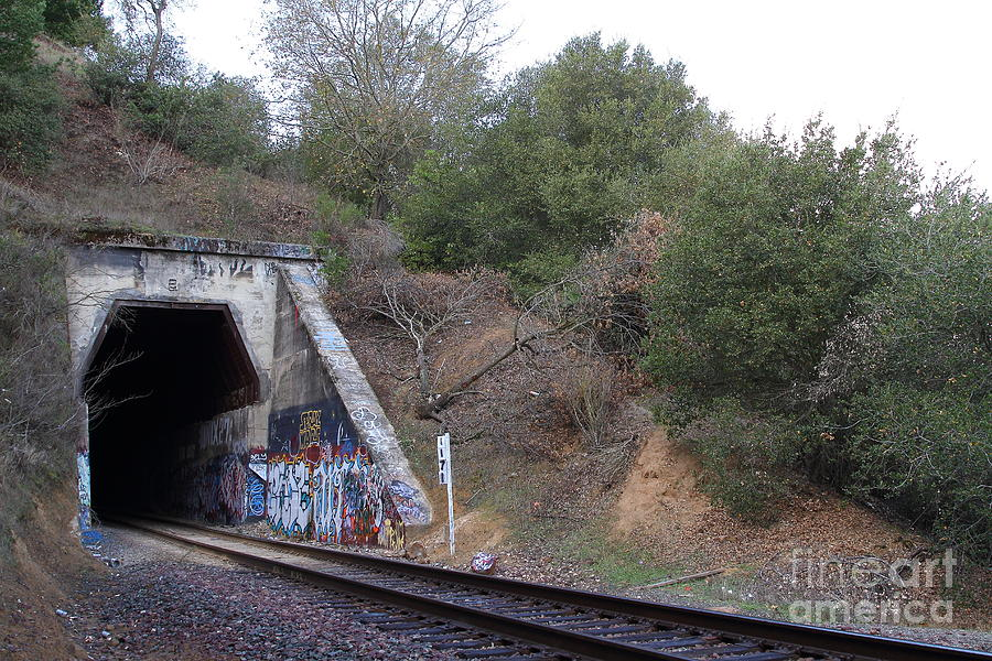 Transportation Photograph - Train Tunnel At The Muir Trestle In Martinez California . 7d10229 by Wingsdomain Art and Photography