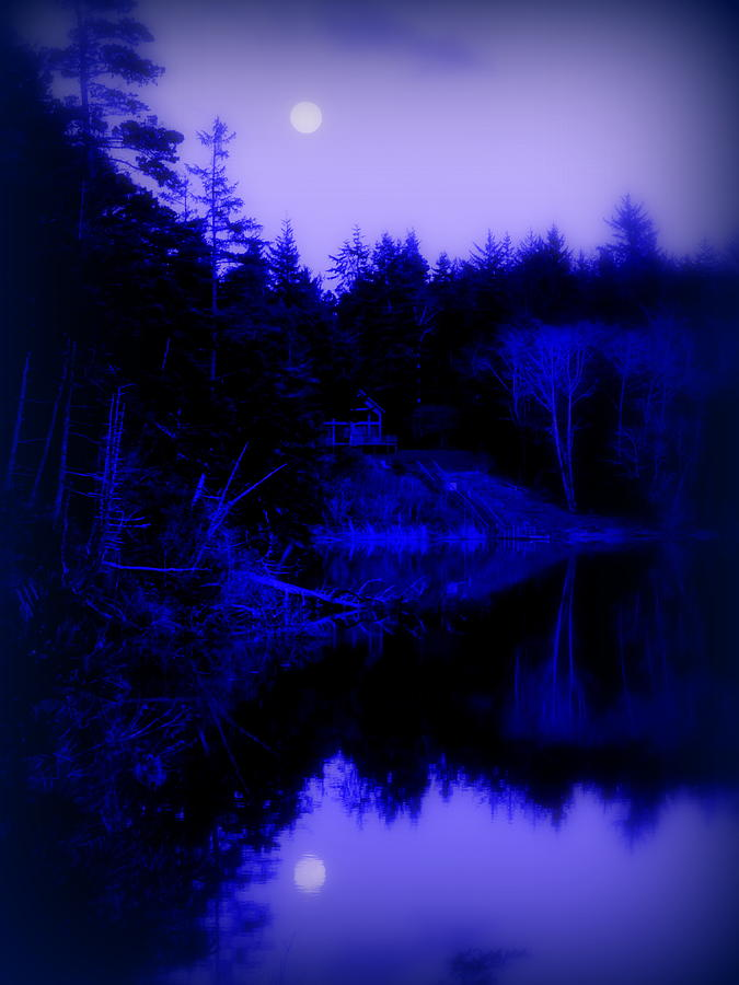 Cindy Photograph - Tranquil Blue Moons by Cindy Wright