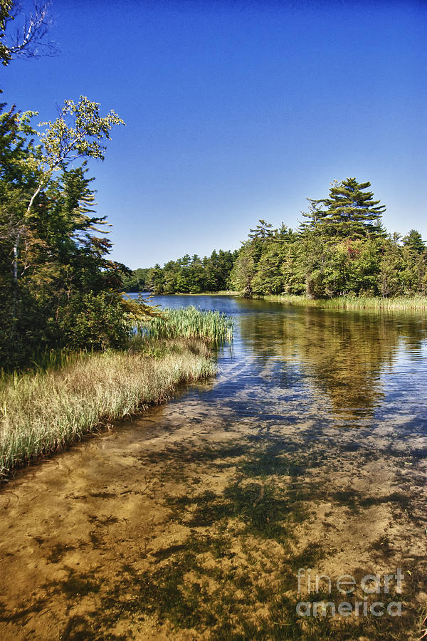 Northern Michigan Photograph - Tranquil Stream In Northern Michigan by Christopher Purcell
