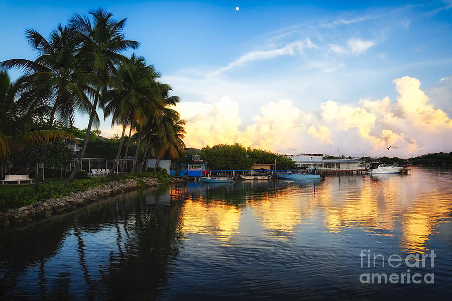 Bay Photograph - Tranquil Sunset In La Parguera by George Oze