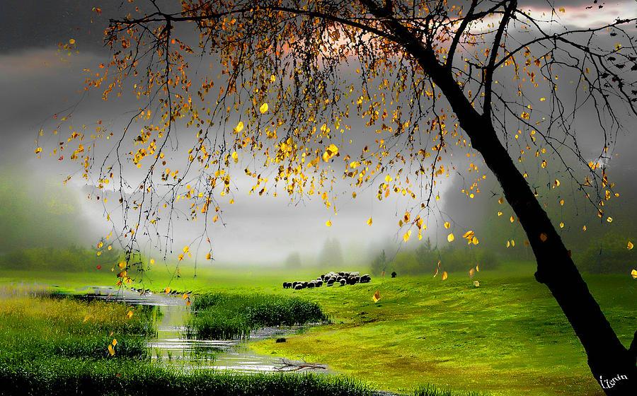 Calmness Photograph - Tranquillity by Igor Zenin