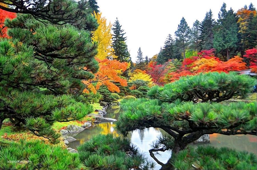 Japanese Garden Photograph - Tranquillity by Sarai Rachel