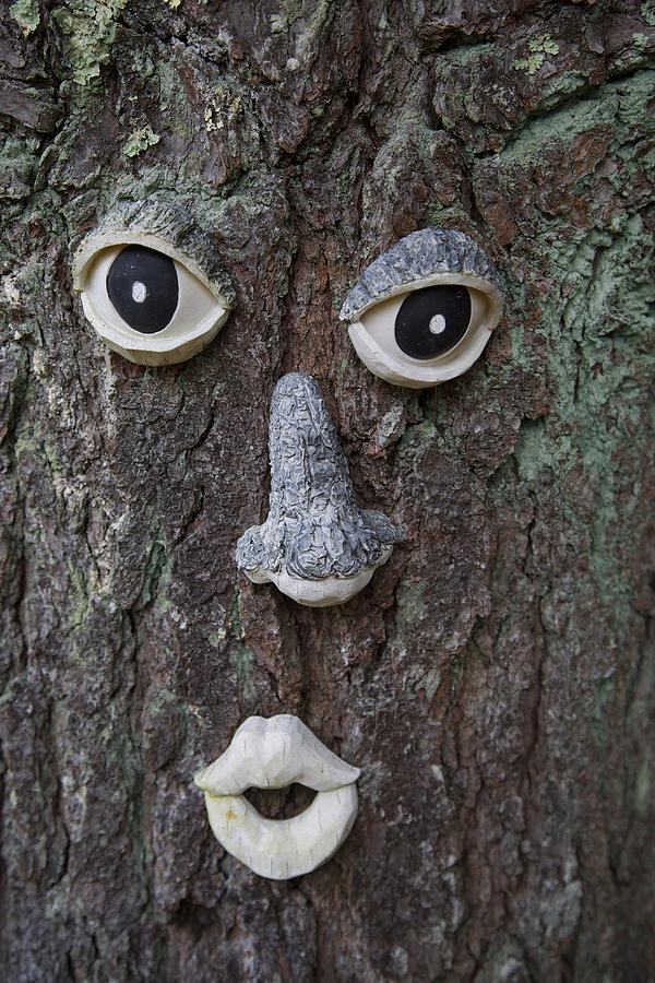 Incroyable Tree Art Faces