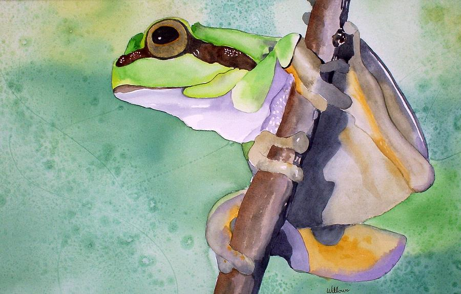 Tree frog by Richard Willows