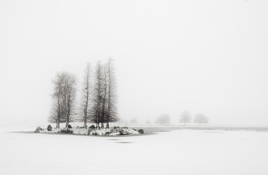 Horizontal Photograph - Tree In Snow by Yagosan