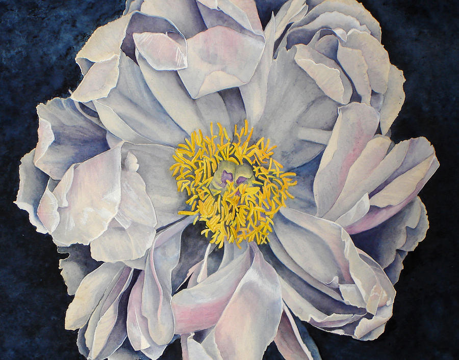 Watercolor Painting - Tree Peony by Yvonne Scott