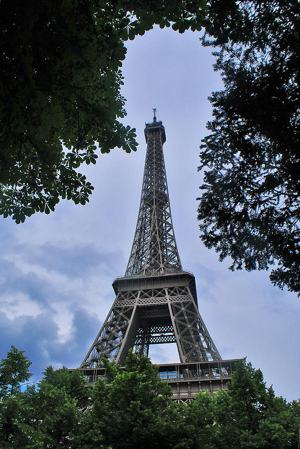 paris photograph trees frame the eiffel tower in paris france by jeff rose - Eiffel Tower Picture Frame