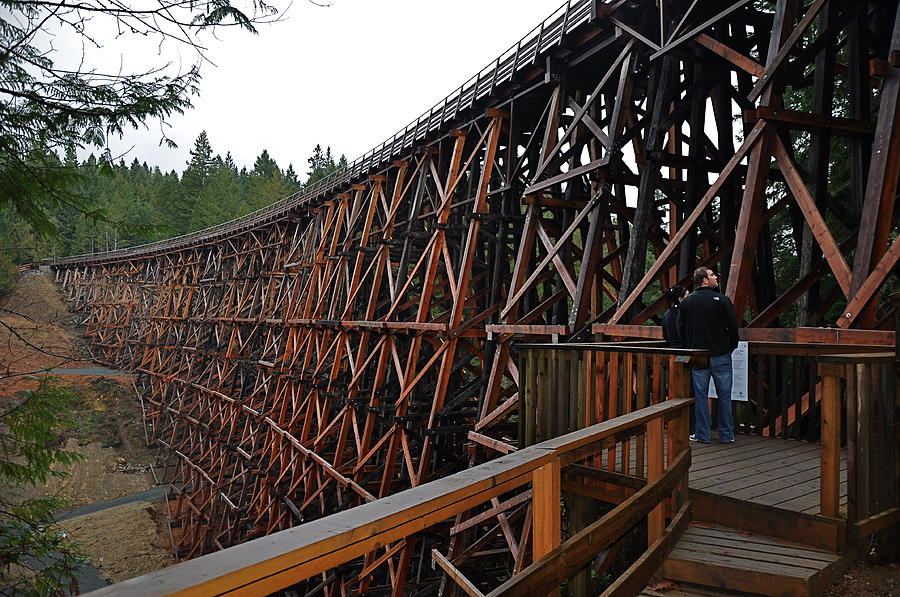 Wooden Trestle Photograph - Trestle Visit by Malcolm  Chalmers