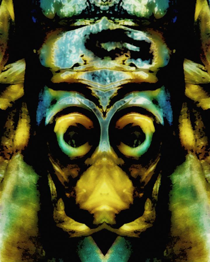 Abstract Photograph - Tribal Mask by Skip Nall