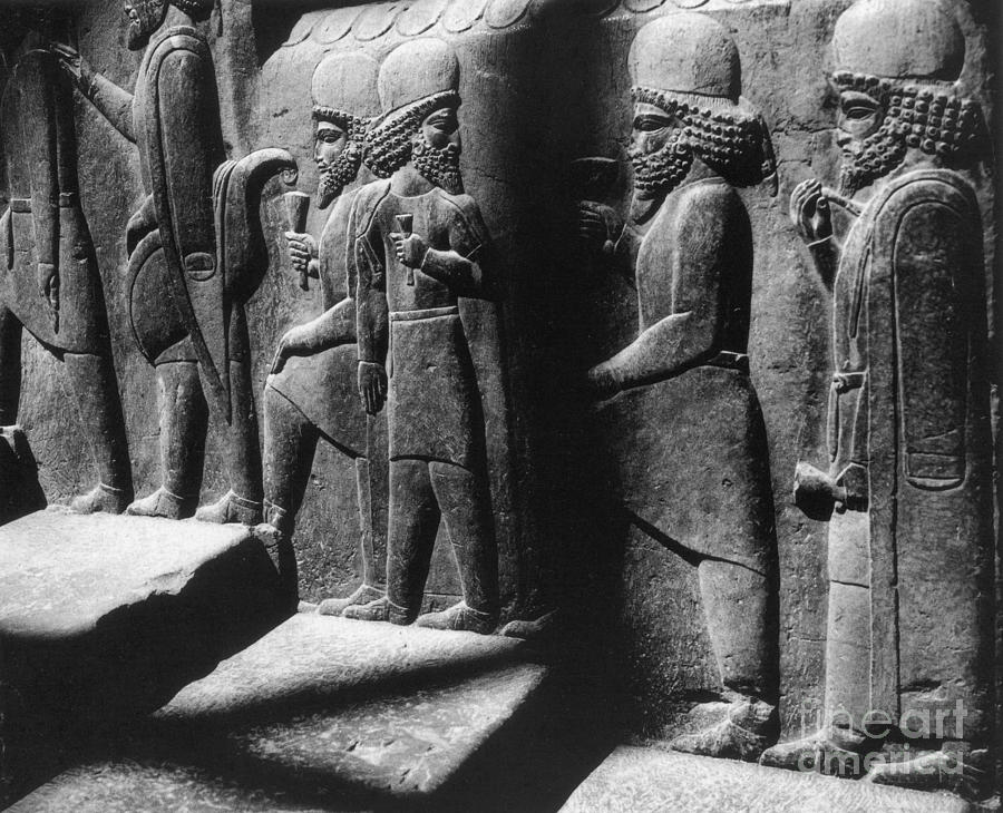 History Photograph - Tribute Bearers, Persepolis, Iran by Science Source