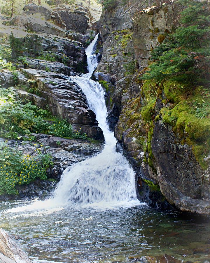 Glacier National Park Photograph - Tricky Falls by Marty Koch