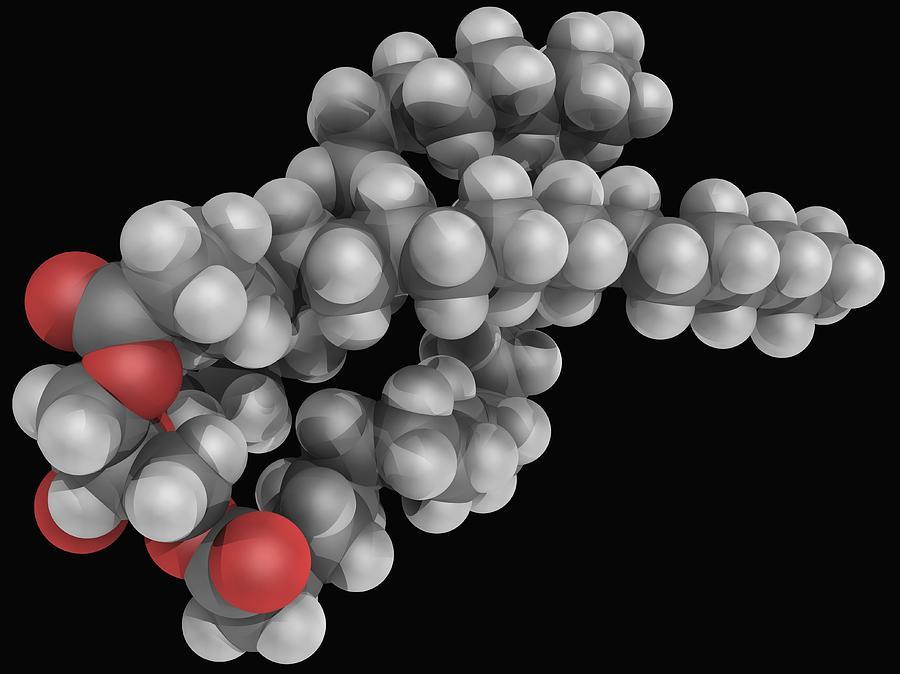 Triglyceride Molecule Digital Art by Laguna Design