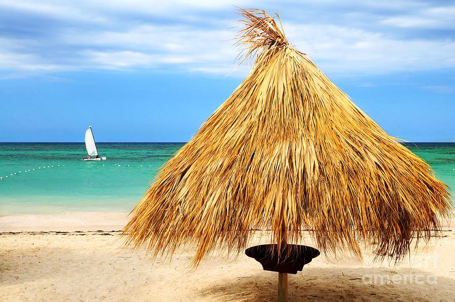 Umbrella Photograph - Tropical Beach by Elena Elisseeva