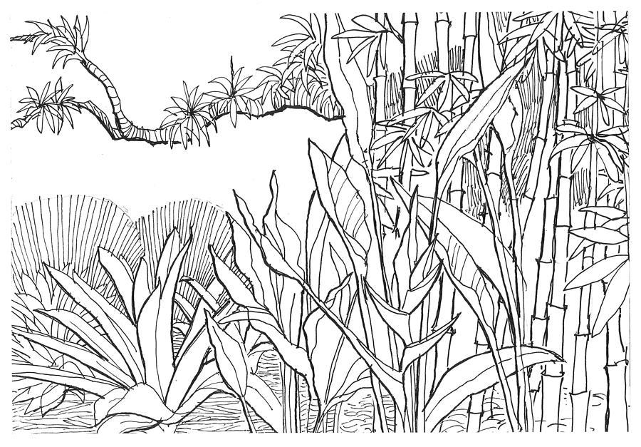 tropical blend by David Burkart