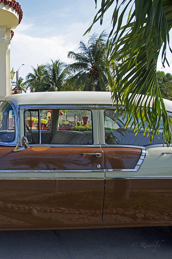 1956 Chevrolet Belair Photograph - Tropical Chevy by Cheri Randolph