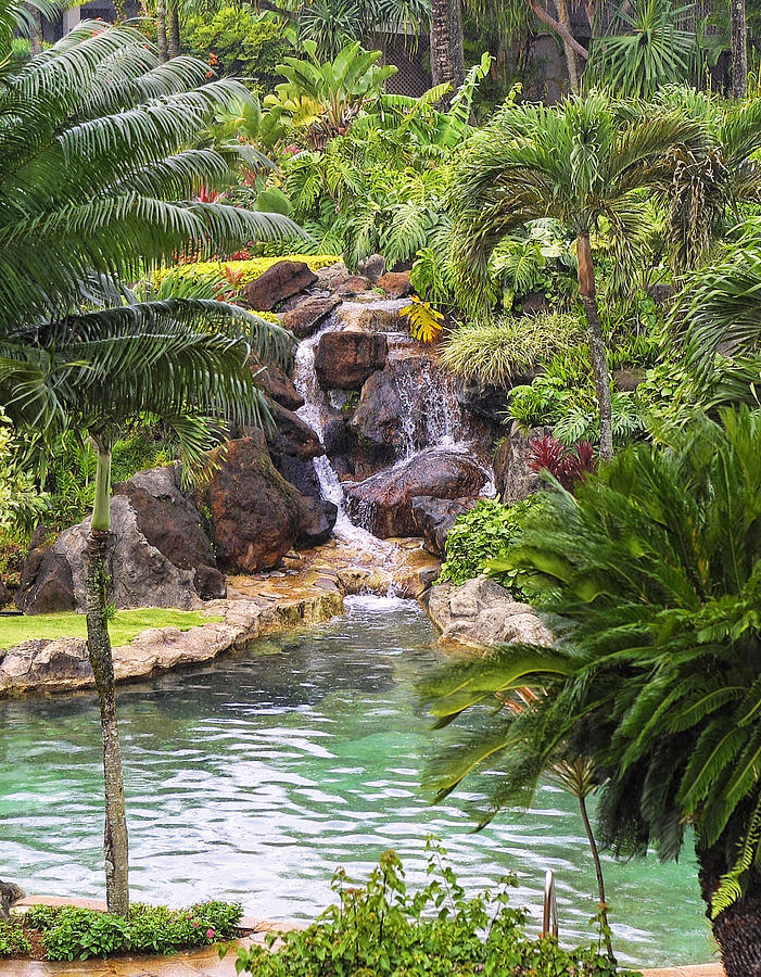 Hawaii Photograph - Tropical Garden Waterfall by Linda Phelps
