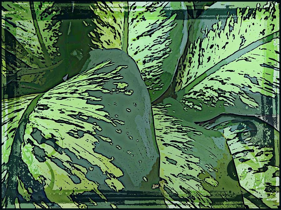 Leaves Photograph - Tropical Green by Mindy Newman