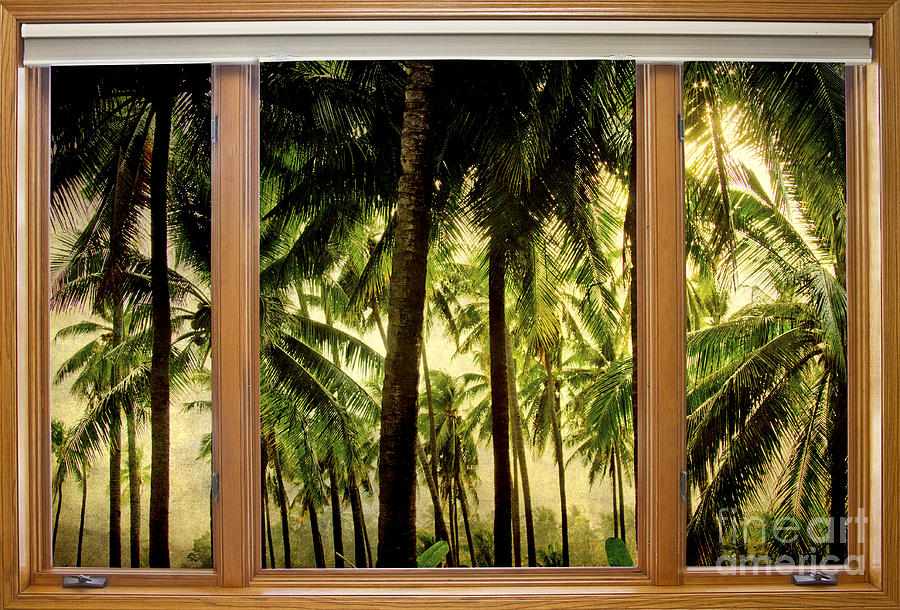 Tropical Photograph - Tropical Jungle Paradise Window Scenic View by James BO  Insogna