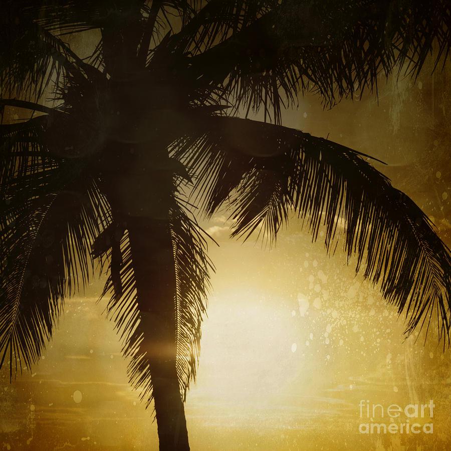 Aloha Photograph - Tropical Paradise by Sharon Mau