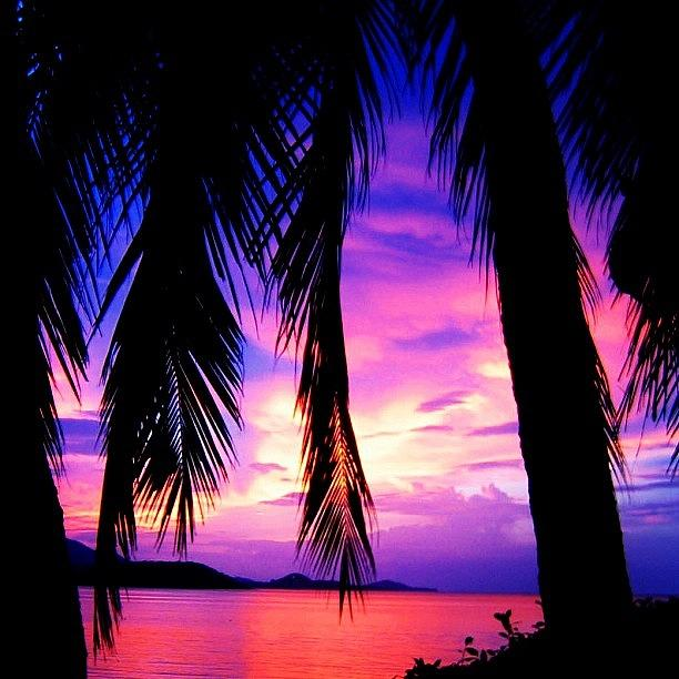 Sunset Photograph - Tropical Sunset by Luisa Azzolini