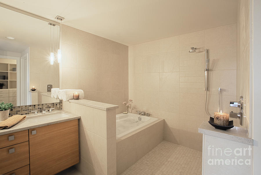 Architecture Photograph   Tub And Shower In Bathroom By Andersen Ross