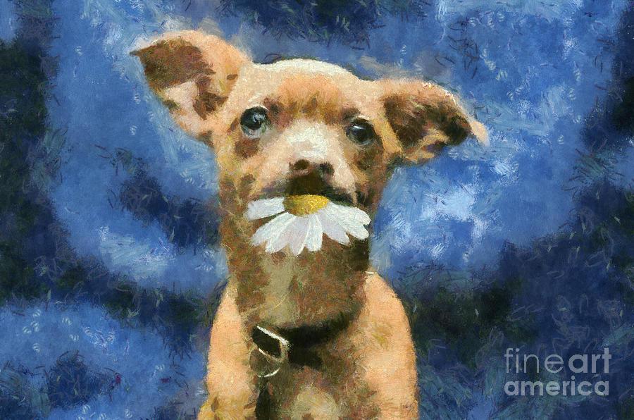 Dog Digital Art - Tuffy by Aimelle