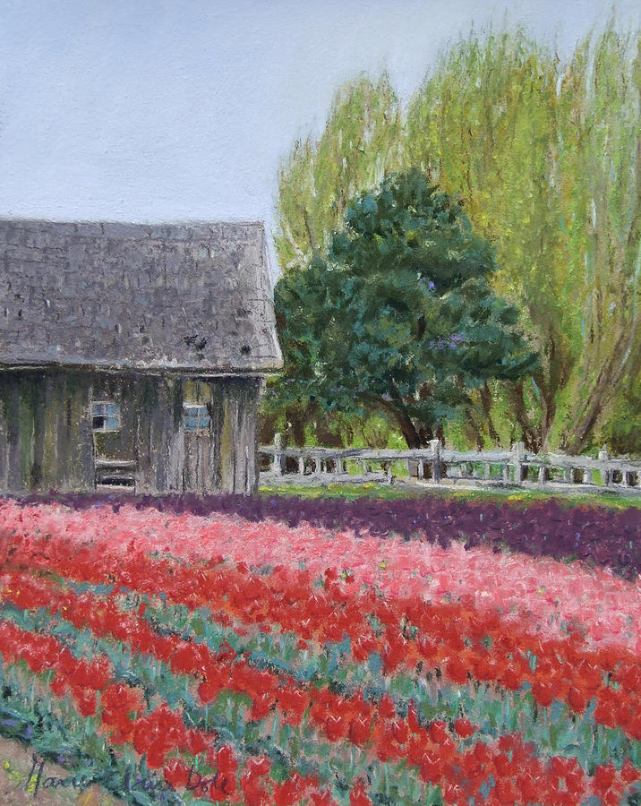 Pastel Painting - Tulip Season by Marie-Claire Dole