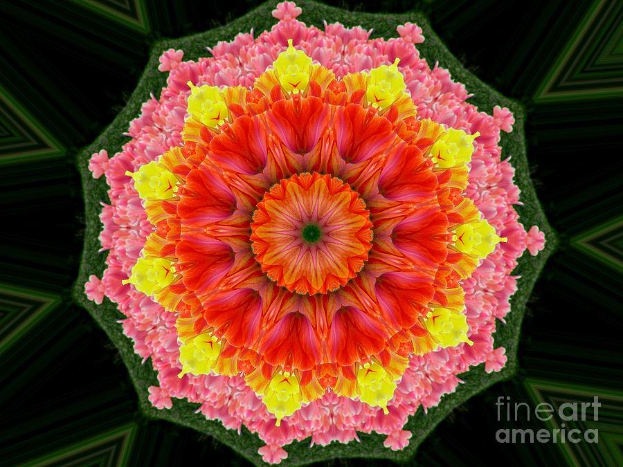 Digital Design Photograph - Tulips 3 by Mark Gilman