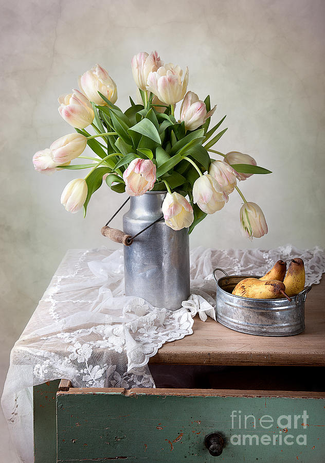 Tulips And Pears Photograph
