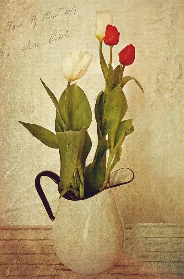Tulips Photograph - Tulips by Kathy Jennings
