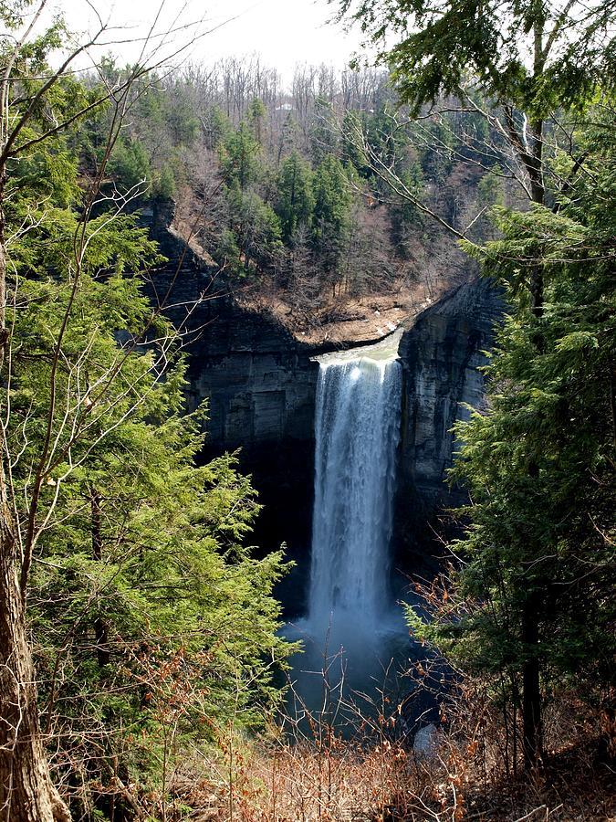Tunkhannock Falls Photograph - Tunkhannock Falls 1 by Joshua House