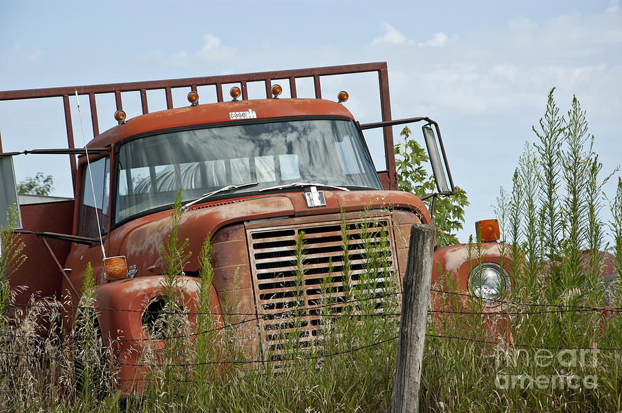Old Truck Photograph - Turned Out To Pasture by Wilma  Birdwell