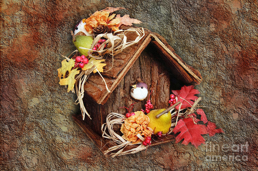 Bird Photograph - Tweet Little Bird House by Andee Design