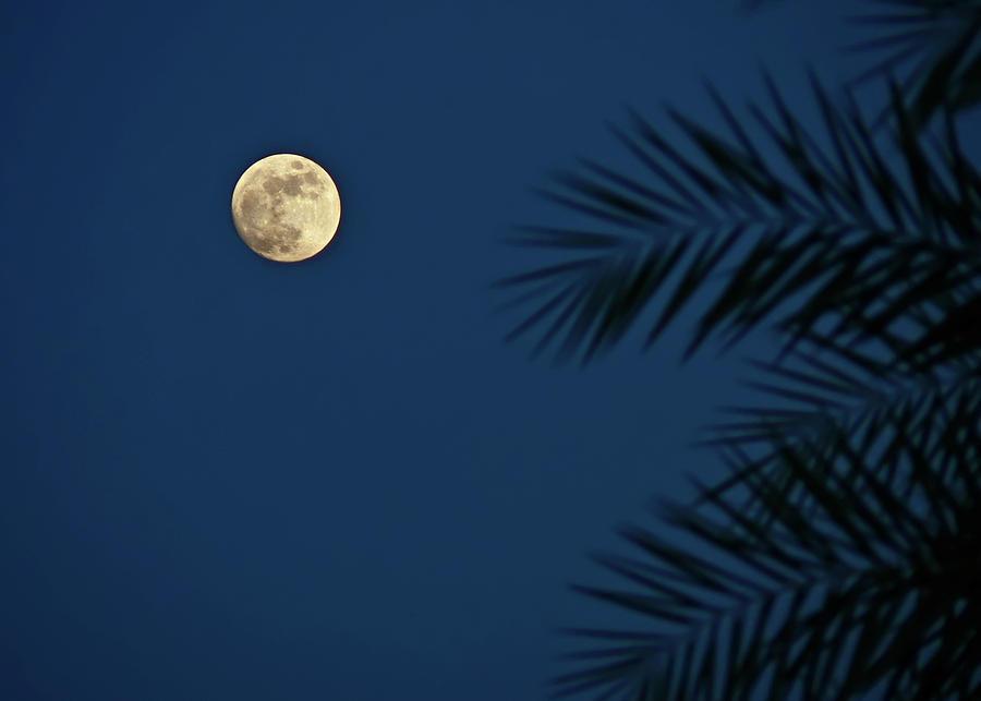 Horizontal Photograph - Twilight Moon by Pandiyan V