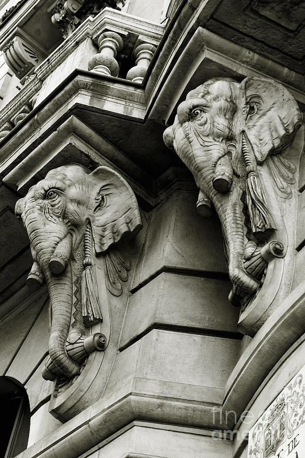 Architecture Photograph - Twin Elephants by Syed Aqueel