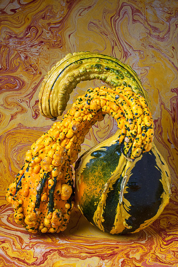 Yellows Photograph - Two Gourds by Garry Gay