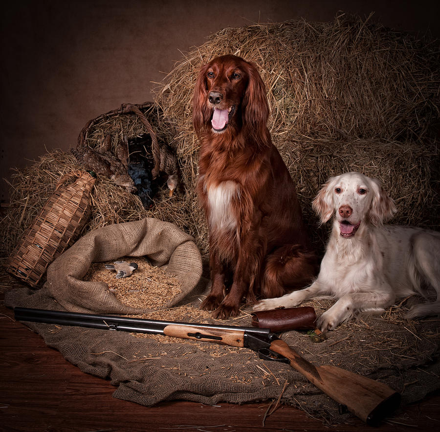 Setter Painting - Two Setters With The Gun... by Tanya Kozlovsky