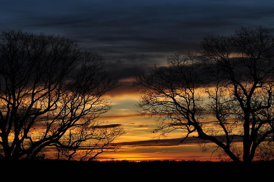 Sunrise Photograph - Two Tree Sunrise by Peter  McIntosh