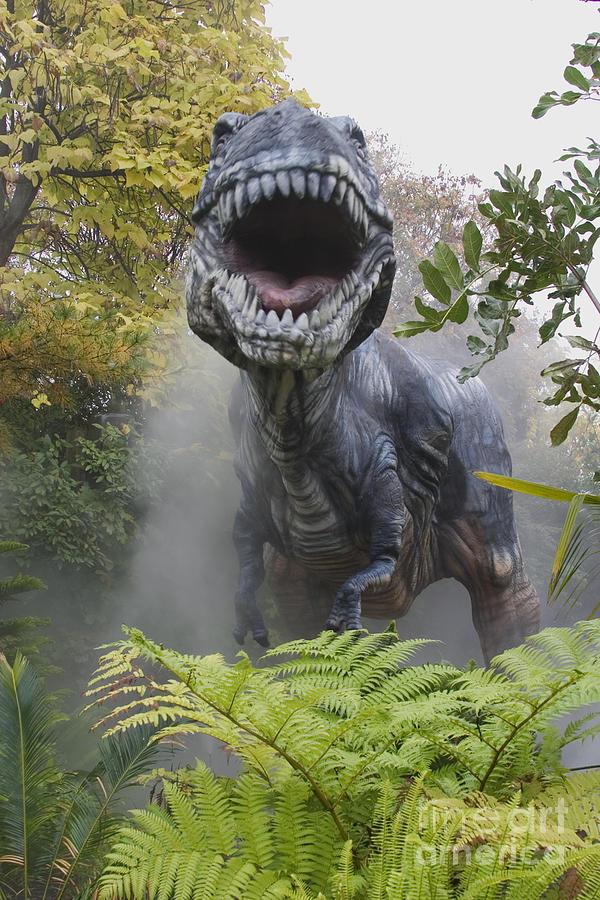 Rex Photograph - Tyrannosaurus by David Davis and Photo Researchers