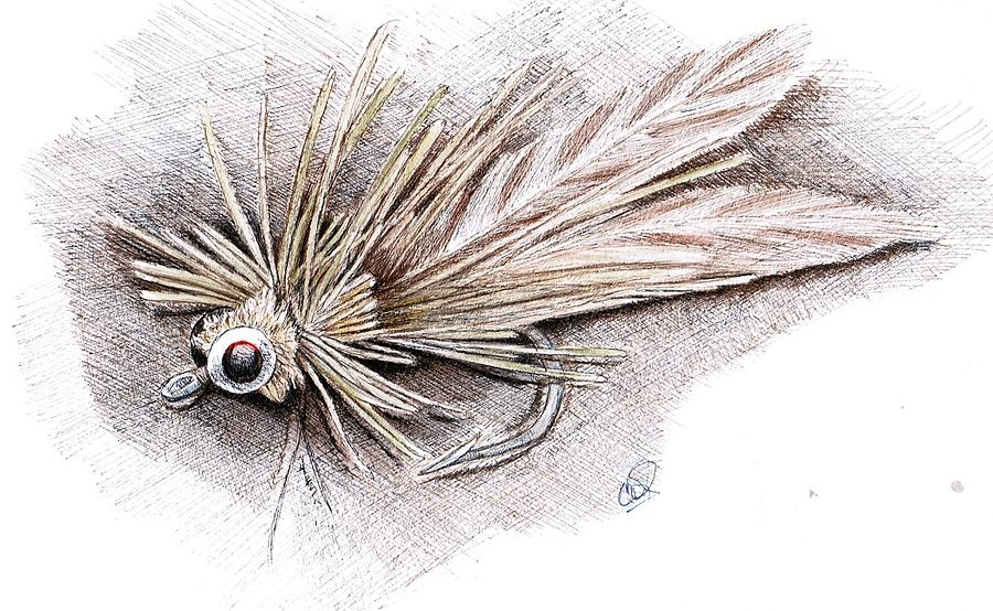 Fly Drawing - Ugly Bug by H C Denney