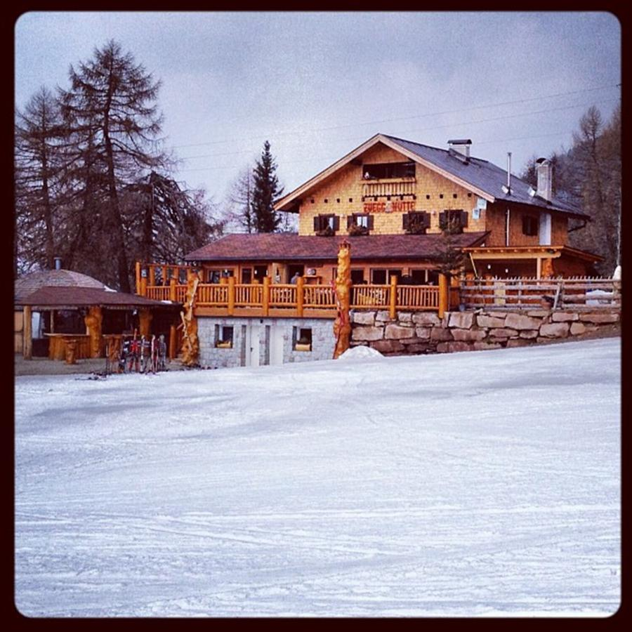 Snow Photograph - Ultima Neve Prima Del Disgelo by Luisa Azzolini