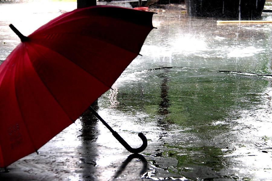 umbrella in rain photograph by dean moriarty