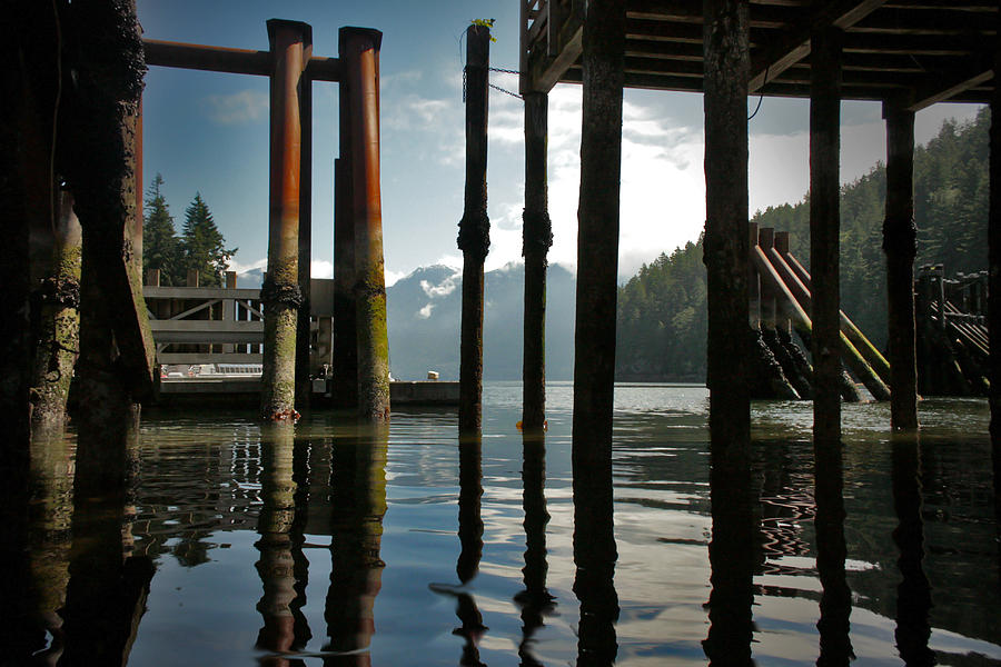 Ocean Photograph - Under The Dock by Janet Kearns