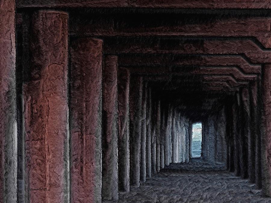 Pier Digital Art - Under The Pier 2 by Ernie Echols
