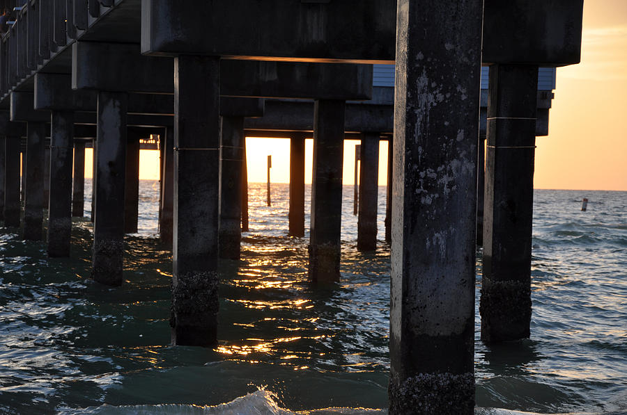 Under The Pier Photograph - Under The Pier by Bill Cannon