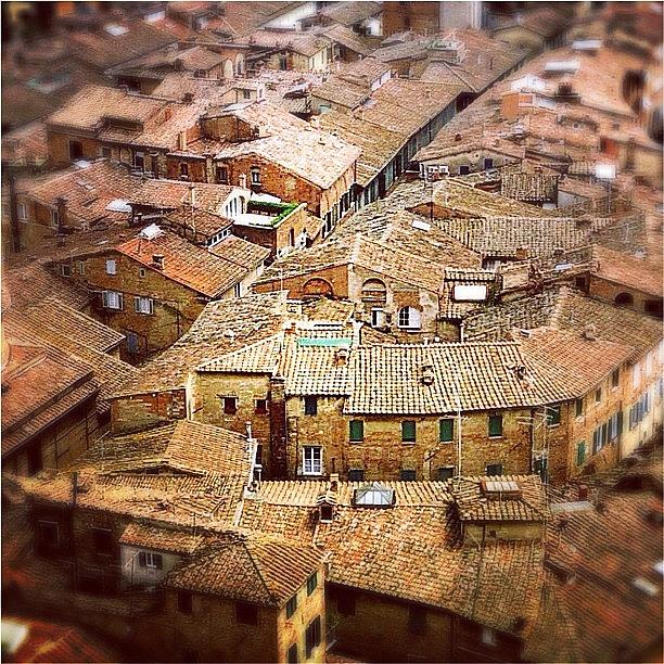 Square Photograph - Under The Tuscan Sun.. #siena #rooftops by A Rey