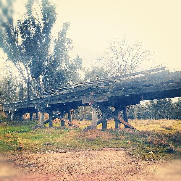Unfinished And Abandon Railway Photograph by Freedom Clarricoats