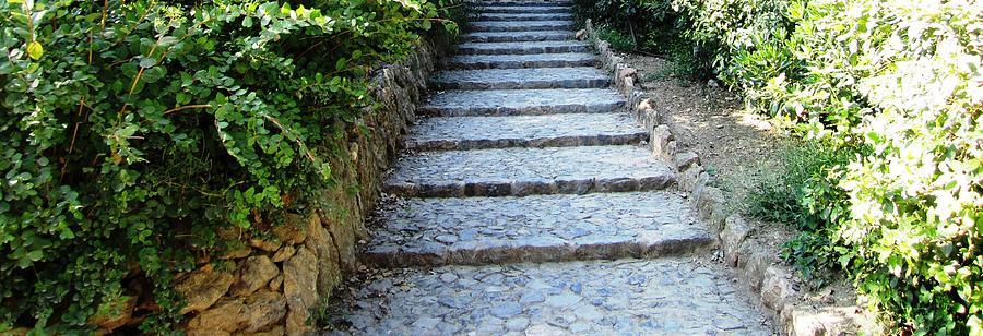 Parc Guell Photograph - Up Hill Stairs In Parc Guell Barcelona Spain by John Shiron