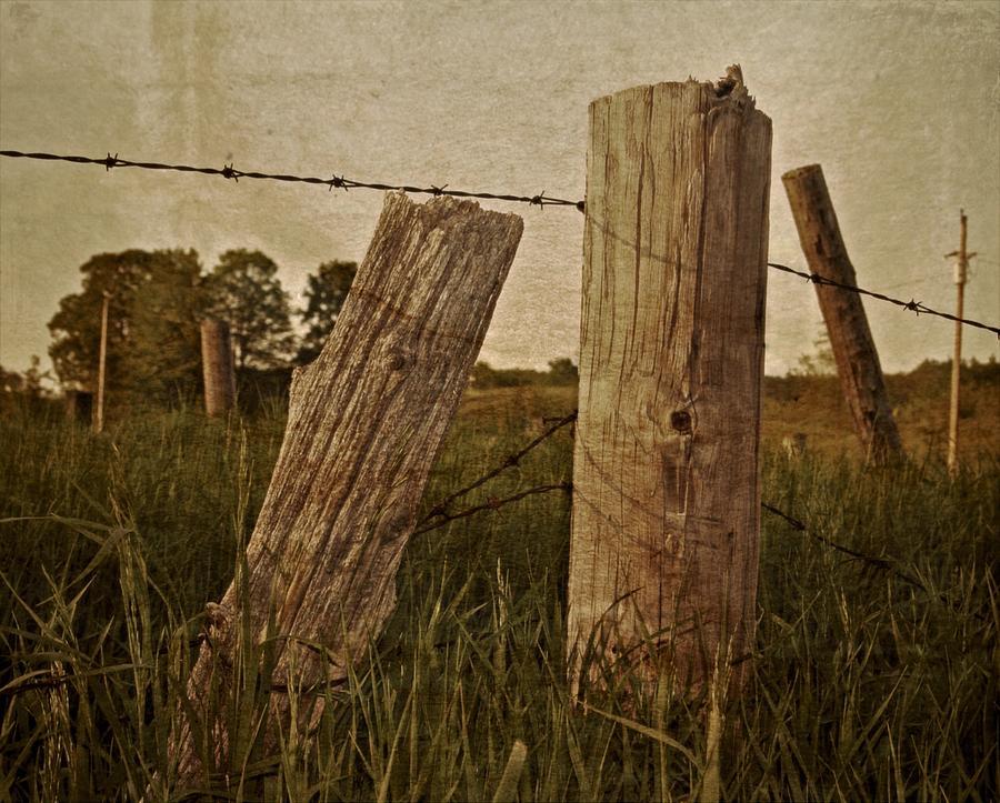 Rural Photograph - Uprights by Odd Jeppesen