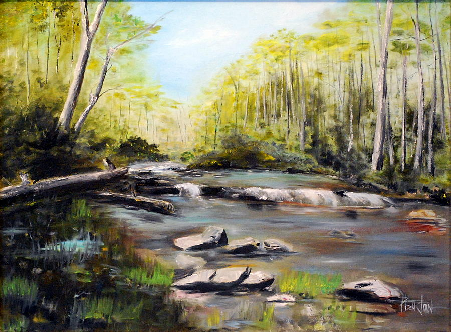 Upstate South Carolina Trout Stream by Phil Burton